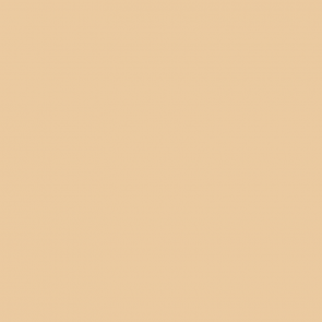 British Standards BS 381C Beige 388