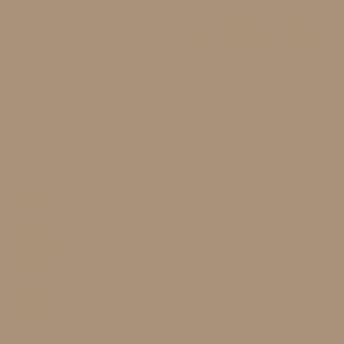 BS 381C Dark Camouflage Desert Sand 420 Aerosol Spray Paint