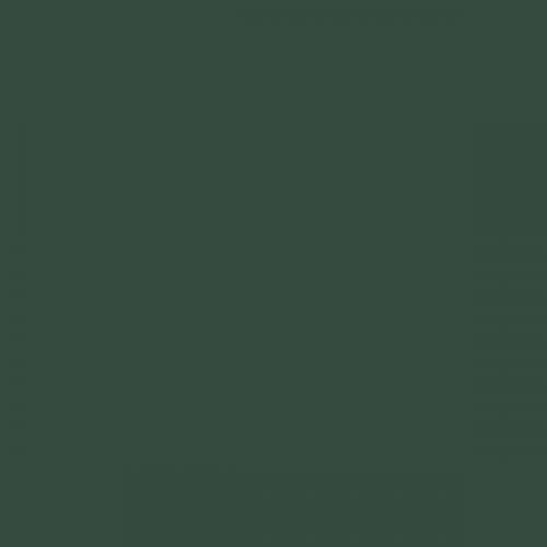 British Standards BS 381C Deep Brunswick Green 227 Aerosol Spray Paint