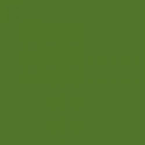 BS 381C Brilliant Green 221