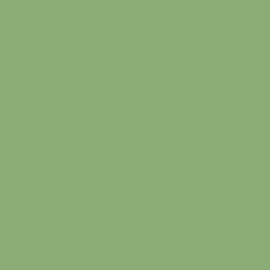 RAL 6021 Pale Green Aerosol Spray Paint
