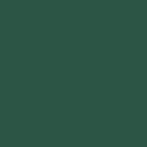 RAL 6028 Pine Green Aerosol Spray Paint