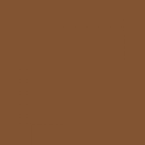 RAL 8003 Clay Brown Aerosol Spray Paint